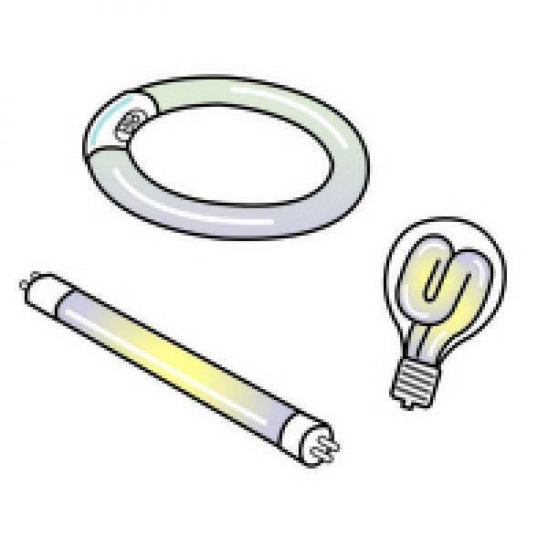 LED照明(LED電球)と蛍光灯(電球)の見分け方サムネイル
